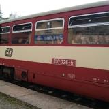 Sneznik311