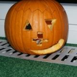 Halloween 49